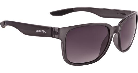 Alpina Darcon Pyöräilylasit , musta/läpinäkyvä